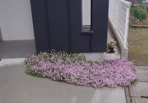 名手の家 花壇